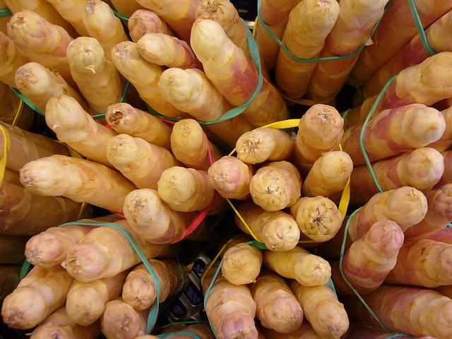 asparagus-4793_640